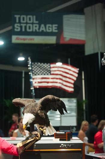 Snap-on-Soar-Eagle